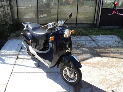 znen snorscooter